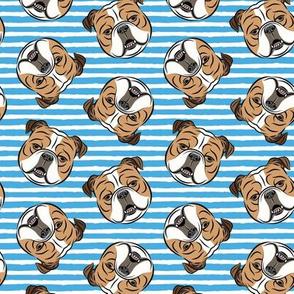 Bulldogs - Toss on Blue Stripes - British bulldog English Bulldog Dog Breed