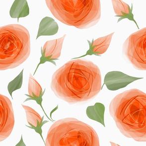 roses-orange_watercolor