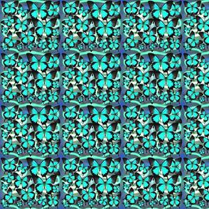 Ulysses Mutli Blue 2 Basic Small
