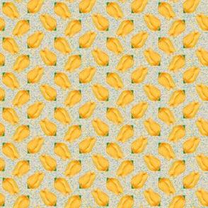 Yellow Tulip Allover