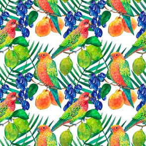 Parrots with lemons and grapes watercolor seamless pattern on white