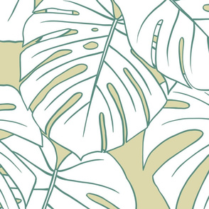 monstera- champagne & celadon - jumbo