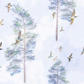 Migration Forest