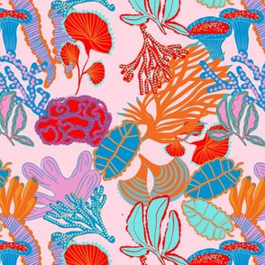 Coral tree pale pink mini