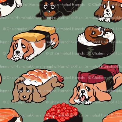 Sushi Basset Hound