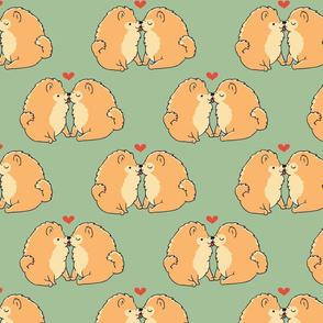 Pomeranian Kisses