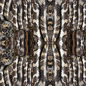 Snakes2 - Mirror Medium