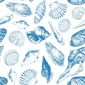 Tropical underwater creatures in blue and white