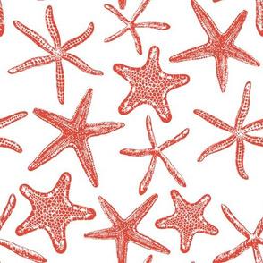 Sea stars hand drawn pattern in red