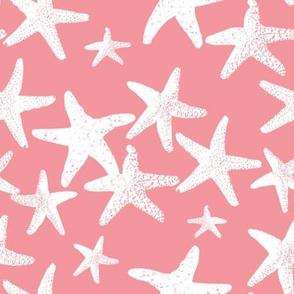 Wish Upon a Star pink lemonade 2