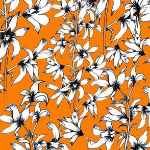 Hello Hyacinth in Orange