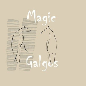 Magic Galgos 1