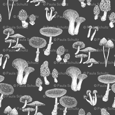 Rspoonflower.10x10_preview