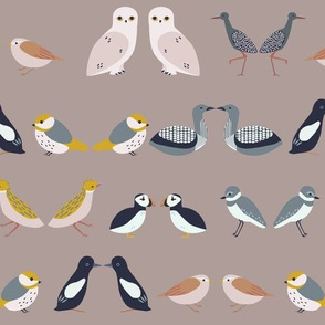 birds of scandinavia - rows (warm)