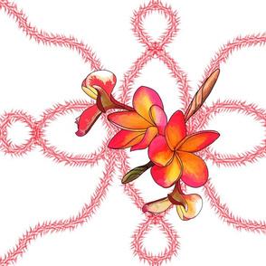 Coloured Frangipani 4 Flowers White Bkgd3 Half-Drop