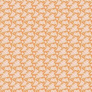 IBD-Orange-lilly 1x1