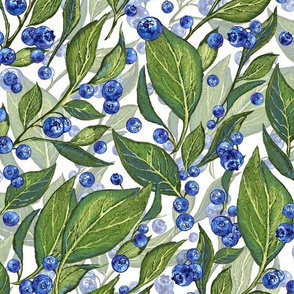 Festive Blueberries   White