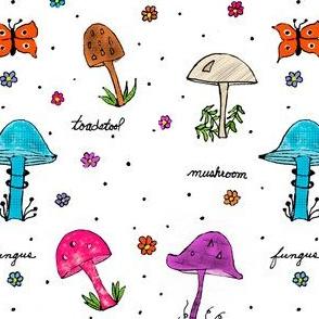 Mushroom_ Toadstool and Fungus