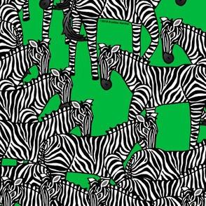 Zebras on Green