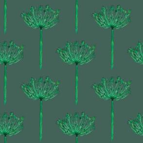 Allium Green Botanical Watercolor