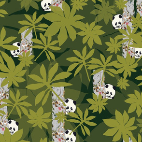 Peeping Pandas in brightest green forest