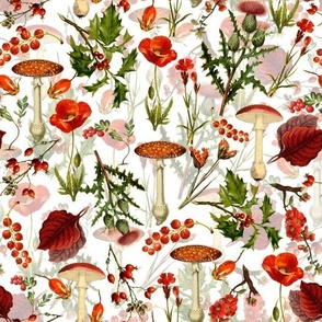 "10"" vintage botanical wildflowers fungus and berries on white"