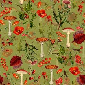 "10"" vintage botanical wildflowers fungus and berries on green"