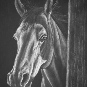 Horse Barn Stable Western