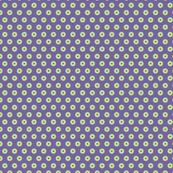 Small circles 1