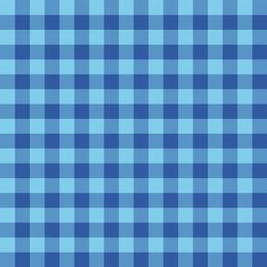 plaid-blue-poppies