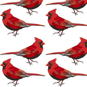 HeatherT-Spoonflower-Cardinals