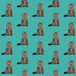 maine coon cat fabric - maine coon fabric, maine coon pattern, cat fabric, cat lady fabric, cat lady design - teal