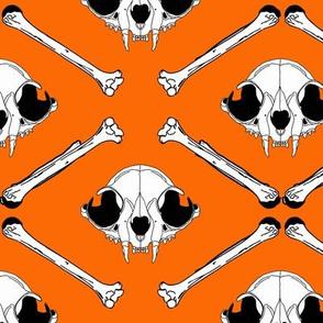 cat skull2 orange