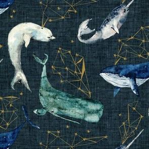 Atlantis Whales (navy)