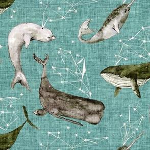 Atlantis Whales (aqua) MED
