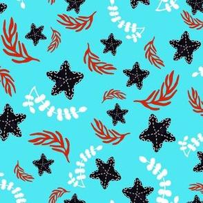 Black Starfish and Red Seaweeds