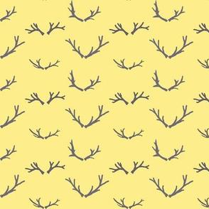 Branching Antlers | Bee Dance
