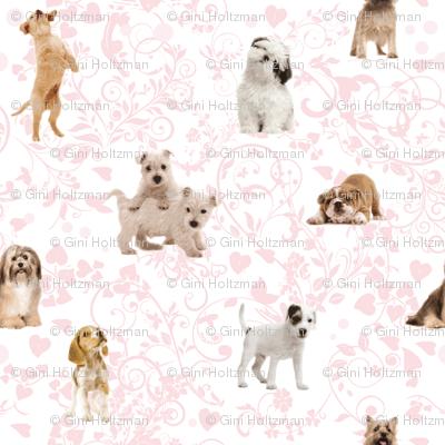 Puppy Love - My Dog, My Valentine.