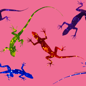 Colorful Spotted Lizards on Pink