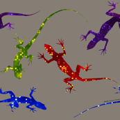 Colorful Spotted Lizards on Warm Gray