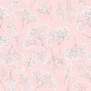 Flowers Baby's Breath on Blush Pink