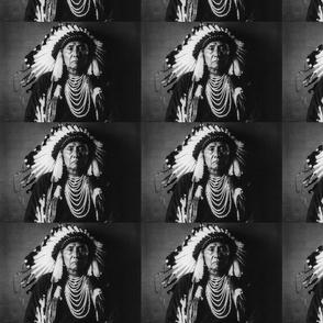 Chief Joseph 2