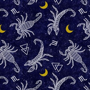 Scorpio Moon in Space