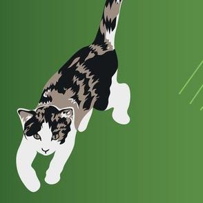 Kitten scratch: large