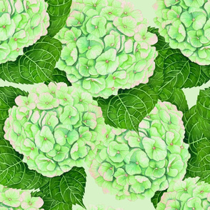 Hydrangea watercolor pattern