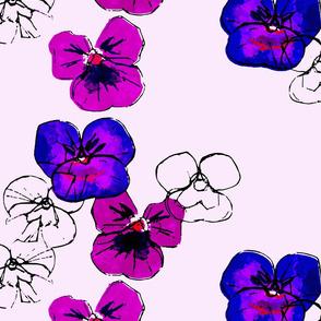Violets-  fauves 2