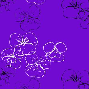 Violets - sparkles