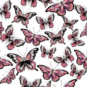 3 butterflies on white