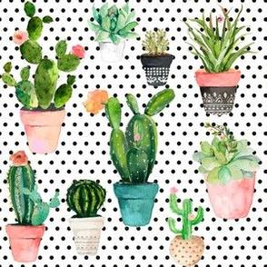 "6"" Cactus Obsession /Black & White / Polka Dots"