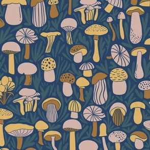 A collection of mushrooms
